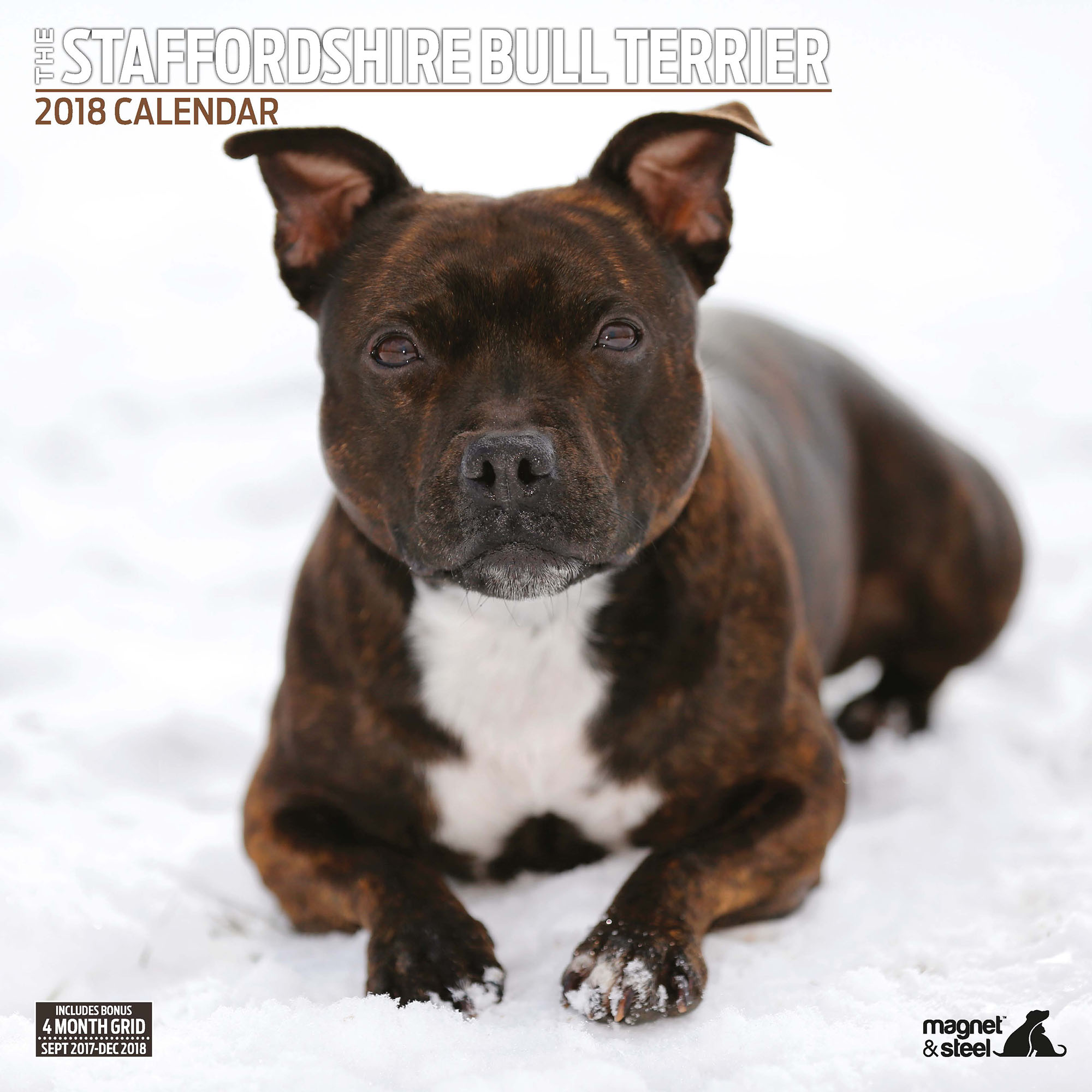 Dog-Toy: Kalender 2018 Staffordshire Bull...